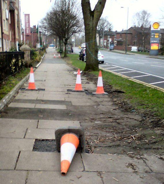 """""""Half a dozen cones"""" by Gerald England is licensed under CC BY-SA 2.0"""